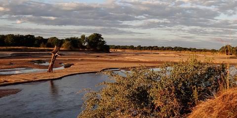 6-Day Tanzania Budget/Mid-Range Lodge Safari Tour