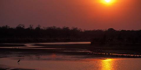5-Day Luangwa Walking Safari