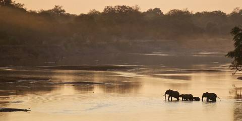 9-Day Stunning South Luangwa
