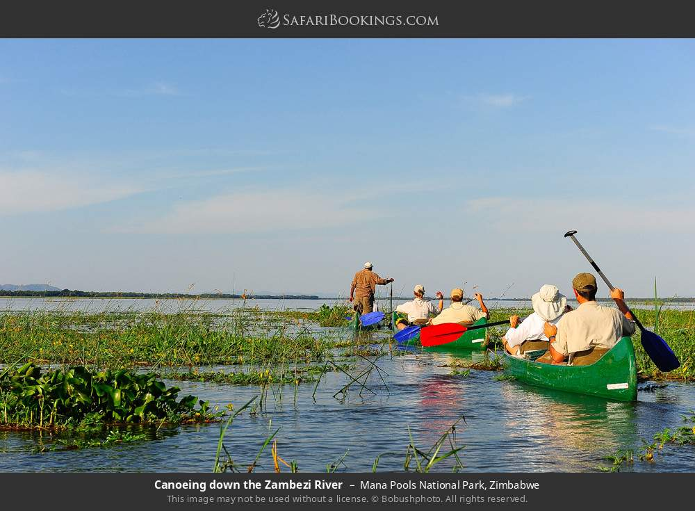 Canoeing down the Zambezi River in Mana Pools National Park, Zimbabwe
