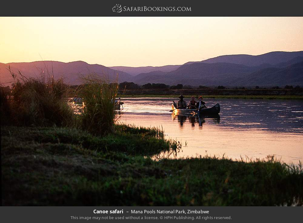 Canoe safari in Mana Pools National Park, Zimbabwe