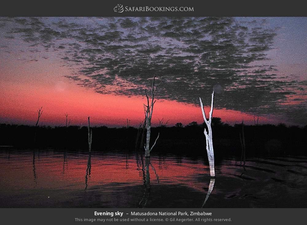 Evening sky in Matusadona National Park, Zimbabwe