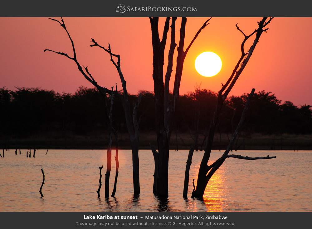 Lake Kariba at sunset in Matusadona National Park, Zimbabwe