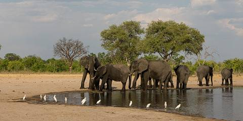 9-Day Affordable Victoria Falls & Hwange