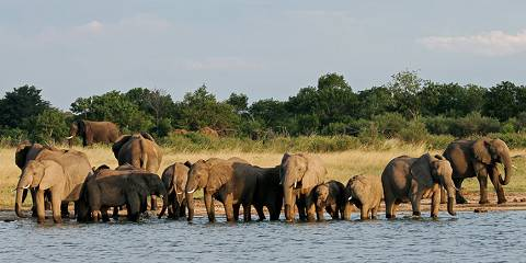 5-Day Victoria Falls and the Hide Hwange National Park