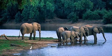 14-Day Great Zimbabwean Journey