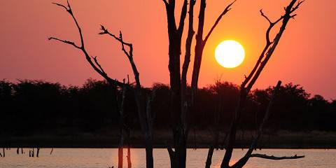 9-Day Vic Falls, Hwange and Matusadona Safari