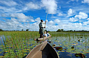 Okavango Delta Photos