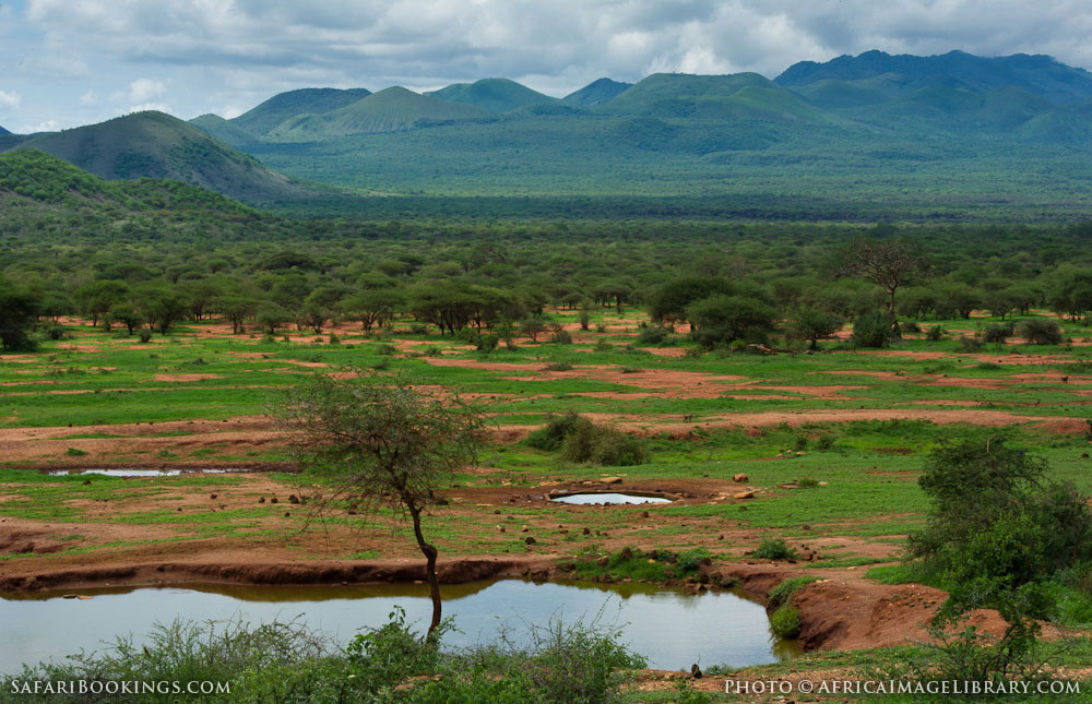 Tsavo West National Park Travel Guide Map Amp More