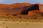 Namibia Dry Season Photos