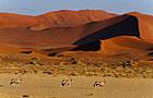 Namibia Dry Season Photos