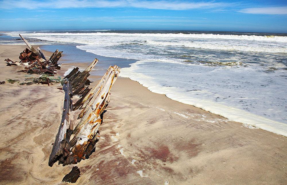 Image result for Skeleton Coast  Beach