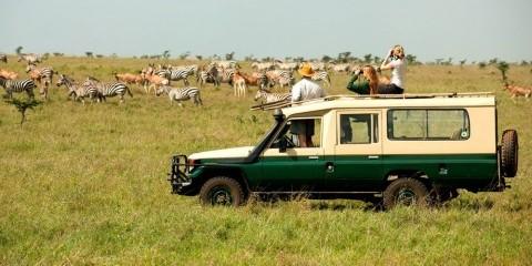 8-Day Magic Kenya: Amboseli, Mara and Ol Pejeta