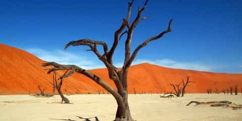 3-Day Namibia - Dunes Express