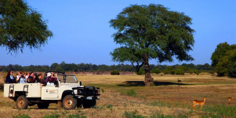 4-Day South Luangwa NP En-Suite Safari Tent Experience
