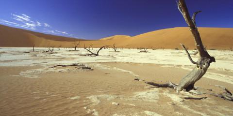 6-Day Namibia Desert & Coast Safari