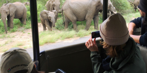 3-Day Kruger National Park Open Vehicle Safari