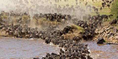 5-Day Wilderness Safari to Serengeti & Ngorongoro Crater