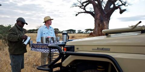 4-Day Serengeti, Ngorongoro & Kilimanjaro Hike
