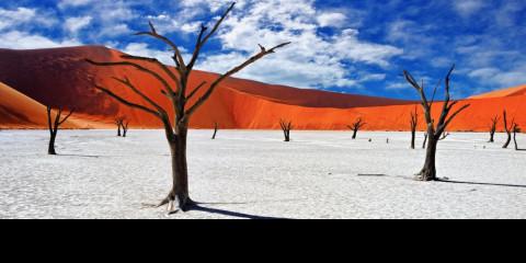 7-Day Namibian Northern Highlights
