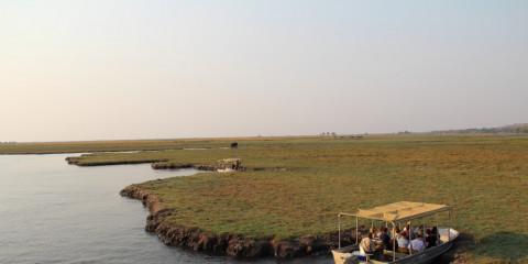 10-Day Botswana & Vicfalls: Quad Biking & Wild Dogs
