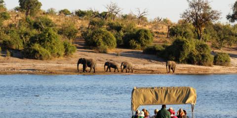 7-Day Botswana Chobe + Okavango Delta Safari Experience