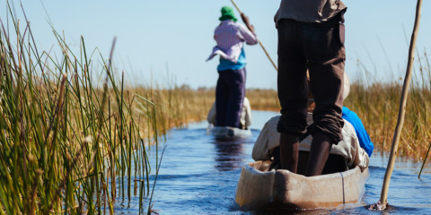 7-Day Family Safari in Botswana with Private Vehicle