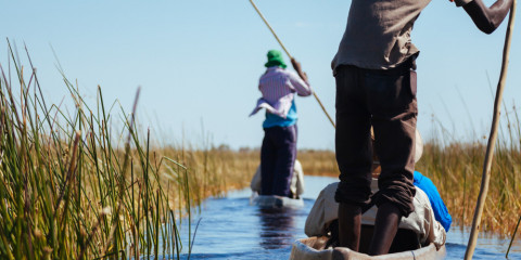 7-Day Okavango Delta, Chief's Island + Chobe Safari