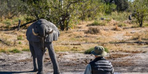 10-Day Chobe, Khwai and Okavango Delta Botswana Safari