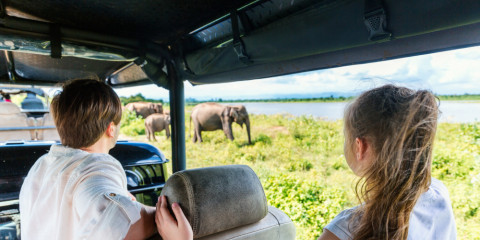 10-Day South Africa Family Vacation