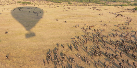 7-Day Tanzanian Luxury Migration Safari Circuit