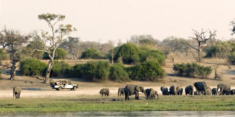 9-Day Makgadikgadi, Moremi, Okavango + Chobe