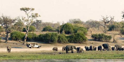 8-Day Modern Luxury in Botswana