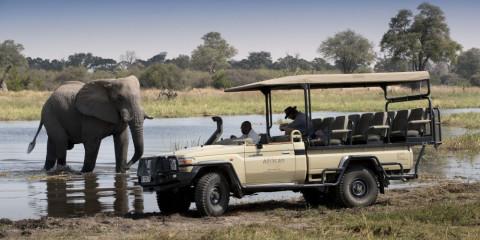 4-Day Botswana Okavango Luxury Safari