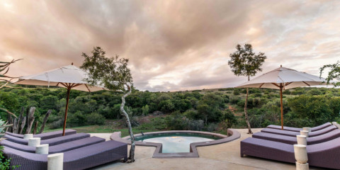 2-Day Amakhala Safari Lodge - 1 Night