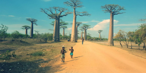 18-Day Madagascar - off the Beaten Track