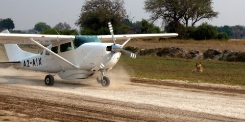 6-Day Fly-in Botswana Safari: Savute & Okavango Delta