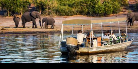 5-Day Botswana Safari Experience and Family Friendly