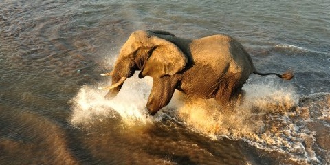 10-Day Botswana + Victoria Falls Luxventure® Safari