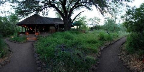 2-Day Mashatu Tent Camp