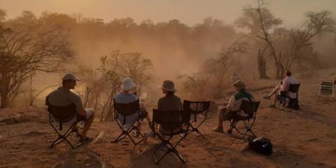 8-Day Chauffeured Mana Pools Safari