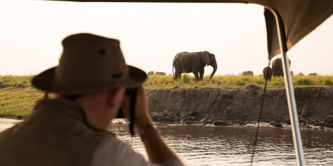5-Day Safari Experience Botswana and Good for Families