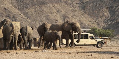 9-Day Diverse Namibia Overland Guided Exploration Safari