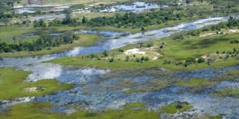 5-Day Okavango Delta