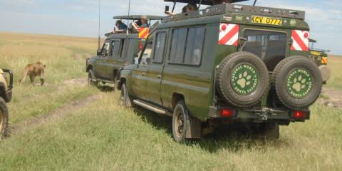 3-Day Masai Mara Safari in 4x4 Safari Jeep - Economy