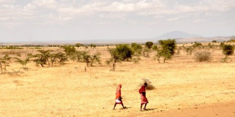 14-Day Authentic Maasai-Hadzabe Culture Serengeti & Z'Bar