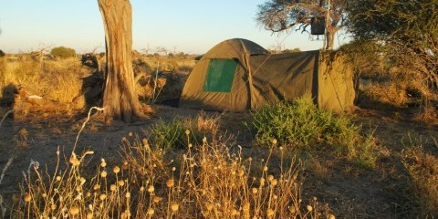 7-Day Desert & Delta Expedition Botswana