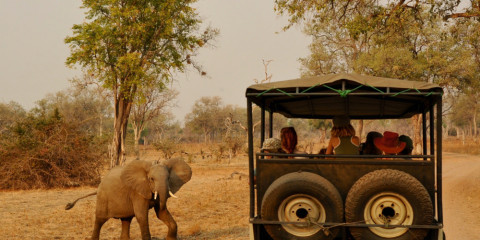 3-Day South Luangwa NP Standard Safari Tent Experience