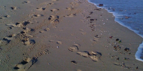 28-Day Southern Coastline | Wild & Beautiful Beaches