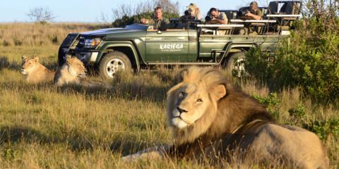 3-Day Eastern Cape Safari with Kariega Ukhozi Lodge